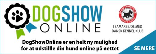 NYHED -> DogShowOnline